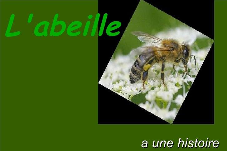 L'abeille a une histoire