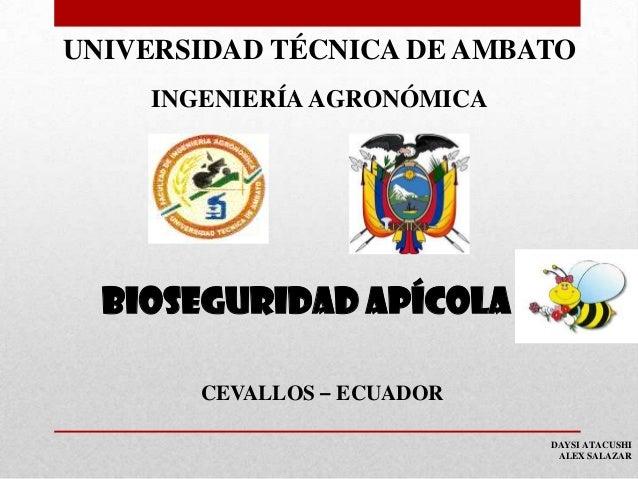 UNIVERSIDAD TÉCNICA DE AMBATO INGENIERÍA AGRONÓMICA  BIOSEGURIDAD apícola CEVALLOS – ECUADOR DAYSI ATACUSHI ALEX SALAZAR