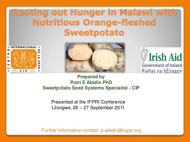 Rooting out Hunger in Malawi with    Nutritious Orange-fleshed           Sweetpotato                    Prepared by       ...