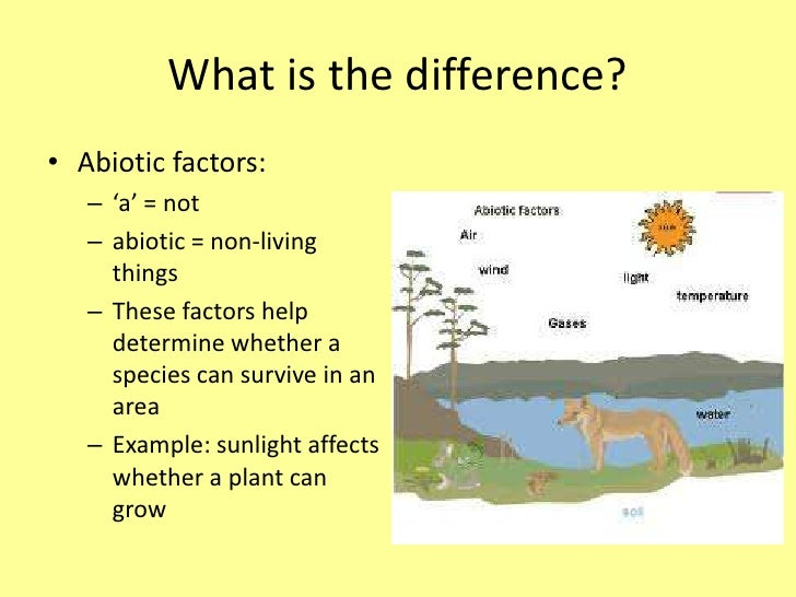 Abiotic and Biotic Stress in Plants
