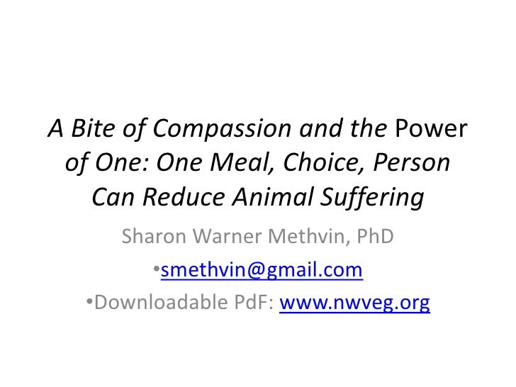 A Bite of Compassion and the Power of One: One Meal, Choice, Person Can Reduce Animal Suffering<br />Sharon Warner Methvin...