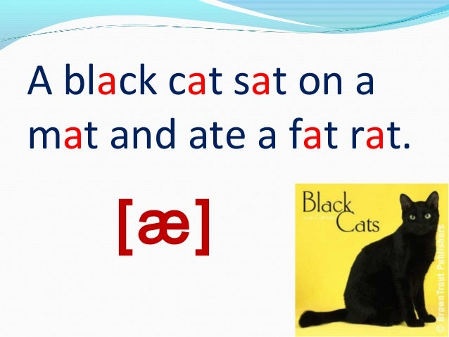 A black cat sat on amat and ate a fat rat.     [æ]