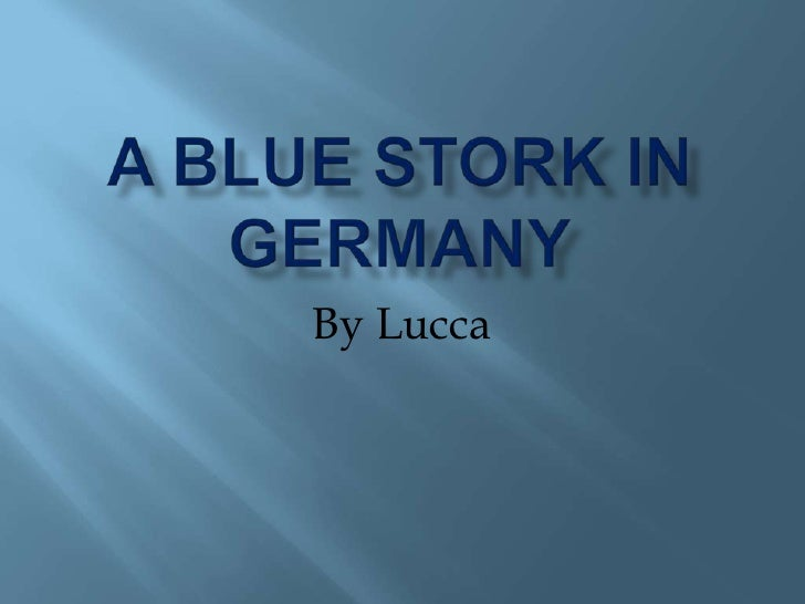 A blue stork in Germany<br />By Lucca <br />