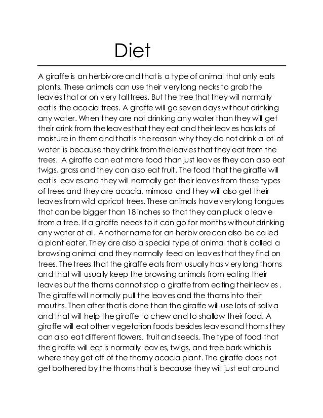Diet A giraffe is an herbivoreand that is a type of animal that only eats plants. These animals can use their verylong nec...