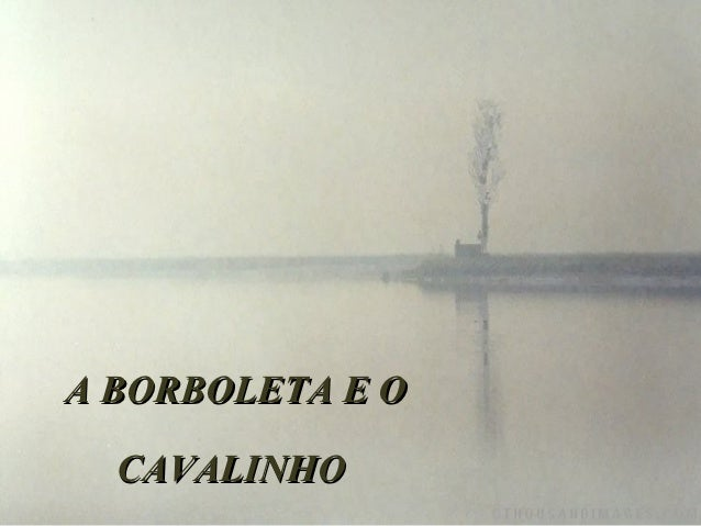 A BORBOLETA E O  CAVALINHO