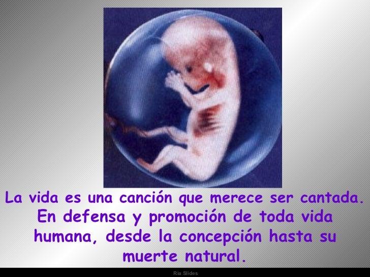 La vida es una canción que merece ser cantada. En defensa y promoción de toda vida humana, desde la concepción hasta su mu...