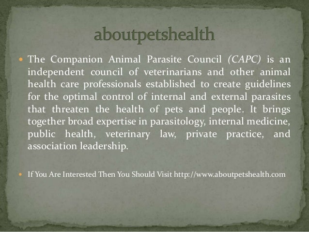 Aboutpetshealth
