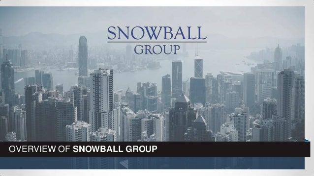OVERVIEW OF SNOWBALL GROUP