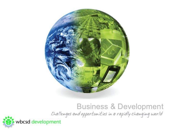 Business and Development: Challenges and Opportunities in a Rapidly Changing World