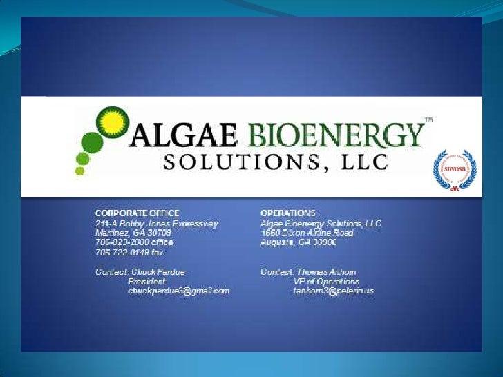 Algae Bioenergy Solutions - Investors Wanted