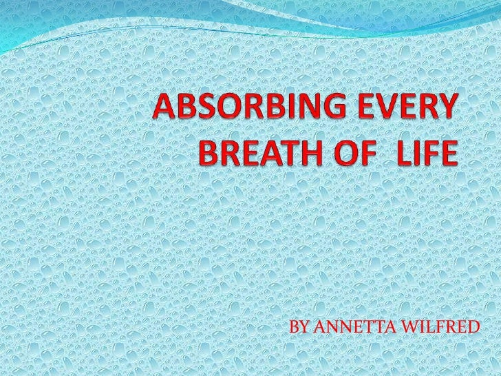 ABSORBING EVERY BREATH OF  LIFE <br />BY ANNETTA WILFRED<br />