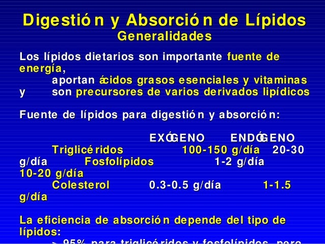 Absorcion digestionlipidica