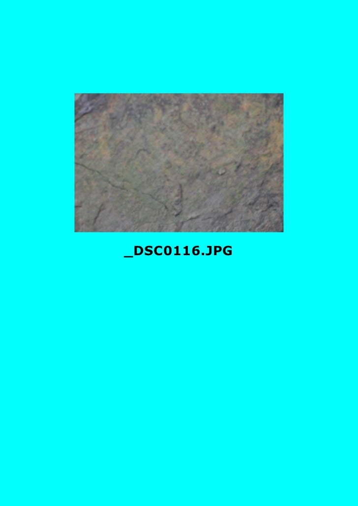 _DSC0116.JPG