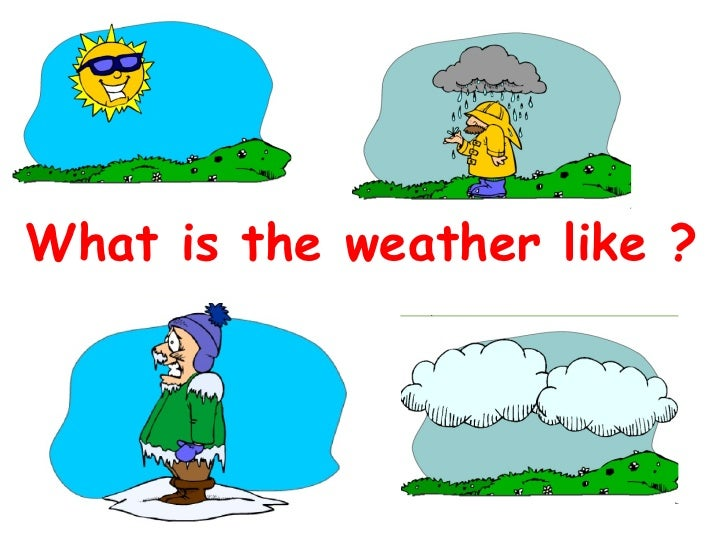 What is the weather like ?