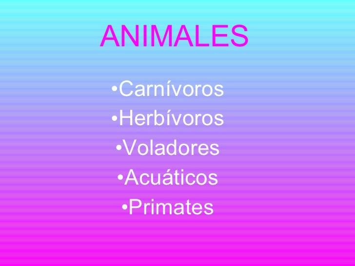 ANIMALES <ul><li>Carnívoros </li></ul><ul><li>Herbívoros </li></ul><ul><li>Voladores </li></ul><ul><li>Acuáticos </li></ul...