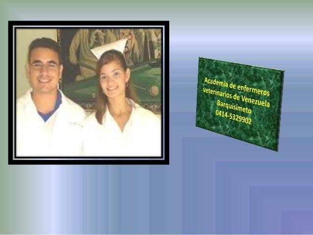 Academia de enfermerosveterinarios de VenezuelaLa veterinaria moderna está hoy al ritmode las necesidades de todas las per...