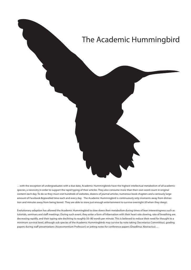Academic Hummingbird A3