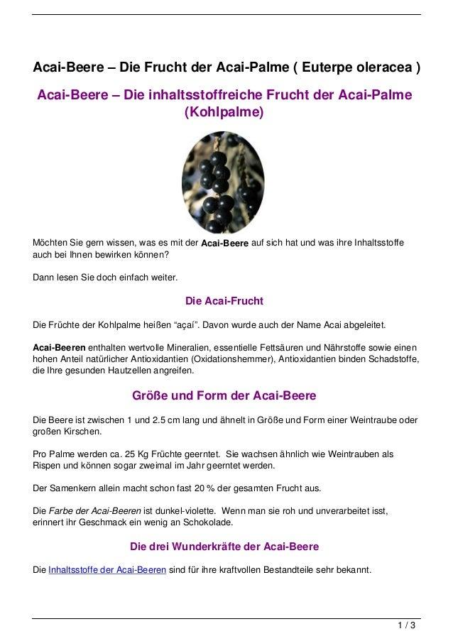 Acai-Beere – Die Frucht der Acai-Palme ( Euterpe oleracea ) Acai-Beere – Die inhaltsstoffreiche Frucht der Acai-Palme     ...