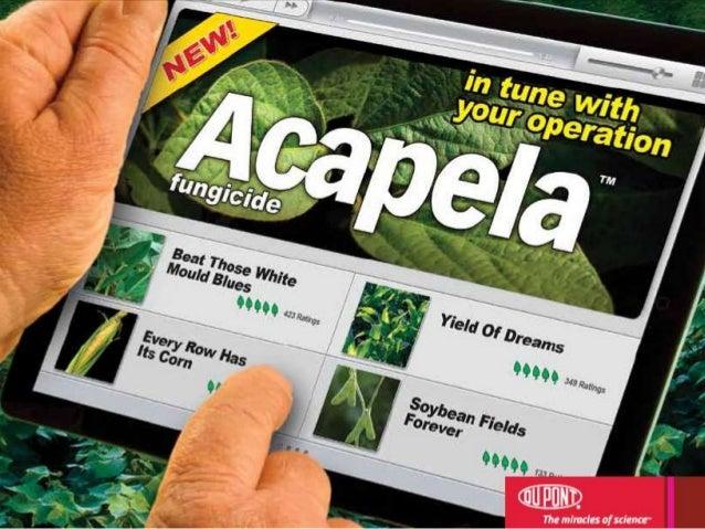 Acapela row crop_en_may9