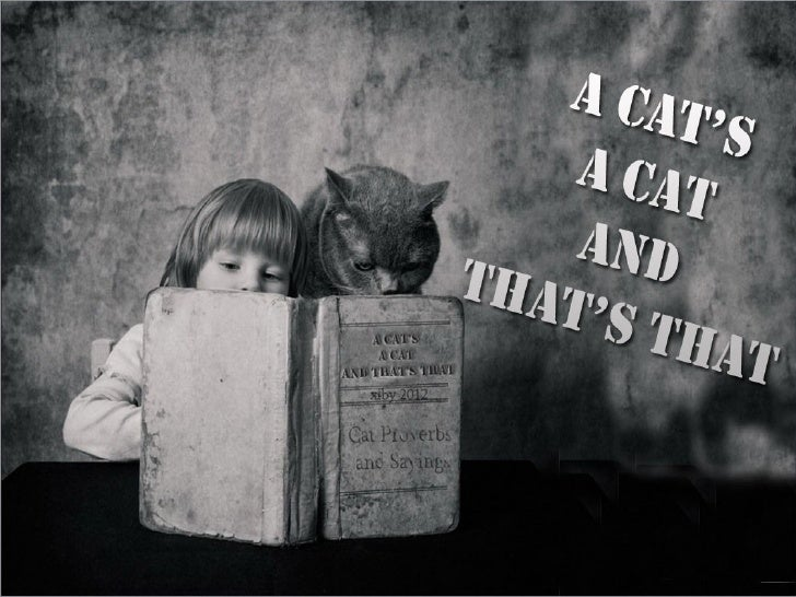 A cat's a cat and that's that.