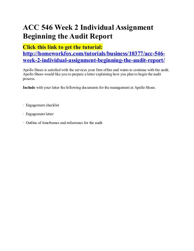Beginning the Audit Report - Essay Example