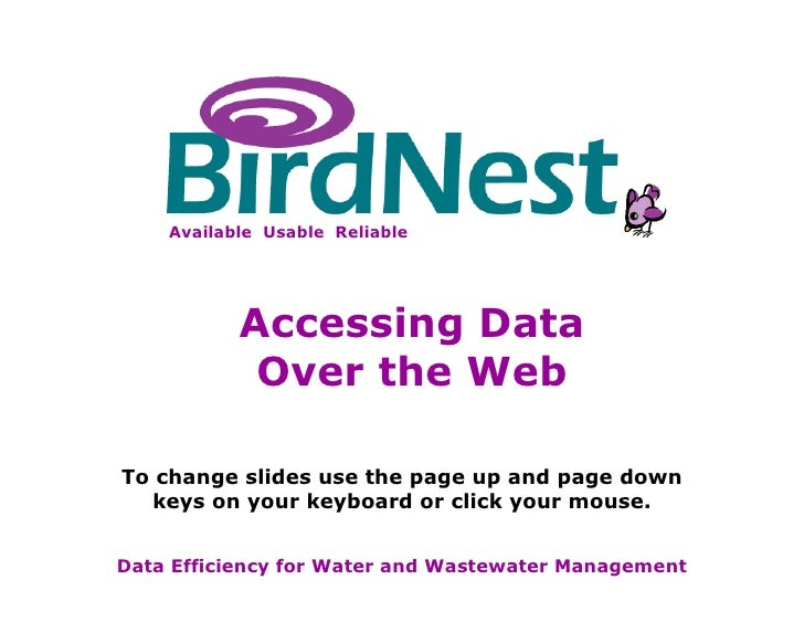 BirdNest Services Data Efficiency for Water and Wastewater Management To change slides use the page up and page down keys ...
