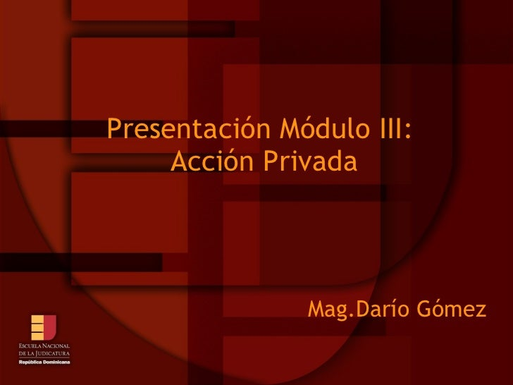 Presentación Módulo III:  Acción Privada Mag.Darío Gómez