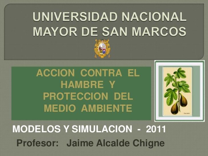 UNIVERSIDAD NACIONAL MAYOR DE SAN MARCOS<br />ACCION  CONTRA  EL  HAMBRE  Y  PROTECCION  DEL  MEDIO  AMBIENTE<br />MODELOS...