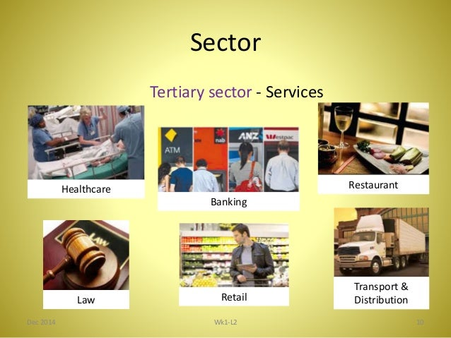 Sector Or Iindustry Group The Difference