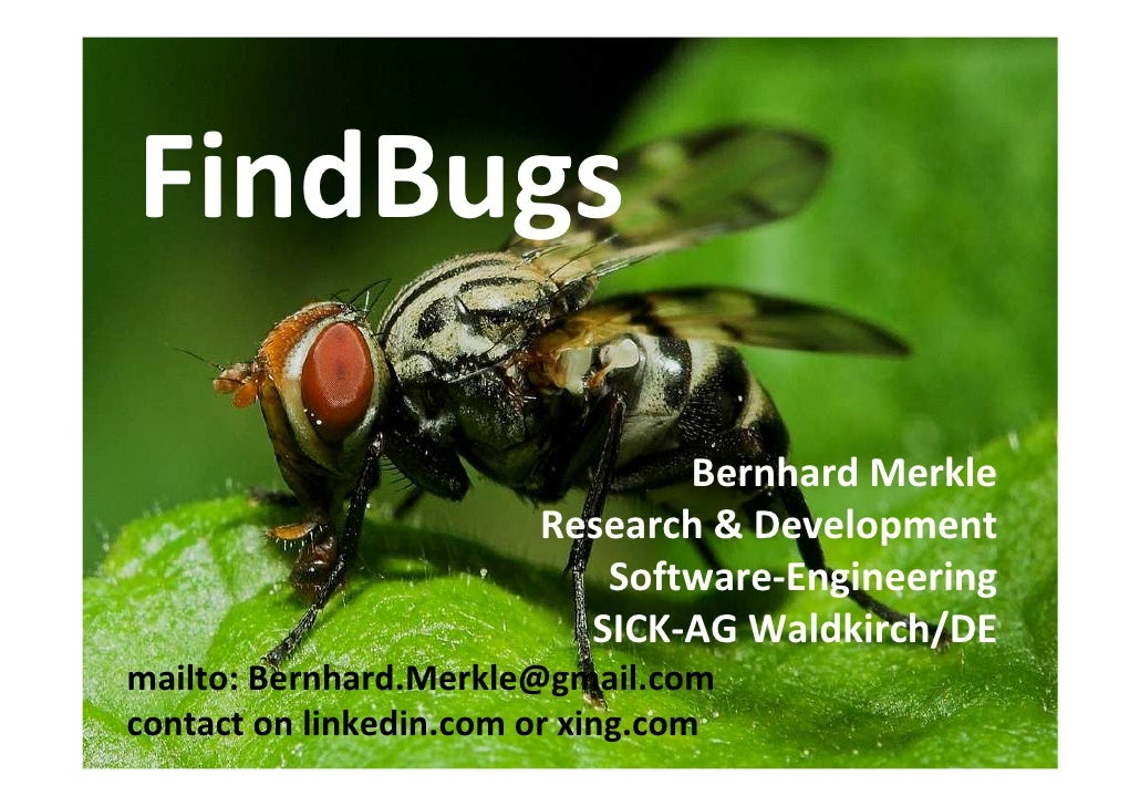 FindBugs                                 Bernhard Merkle                         Research & Development                   ...