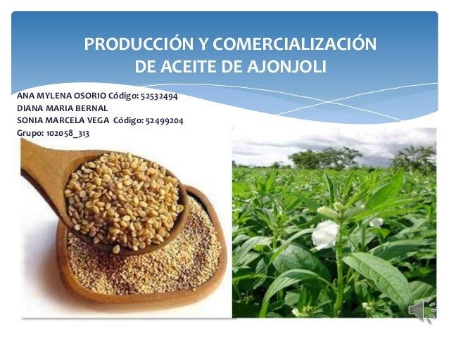 Producción y Comercialización de Aceite de Ajonjoli