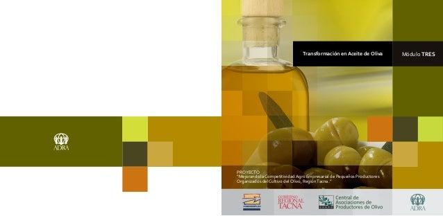 """Transformación en Aceite de Oliva       Módulo TRESPROYECTO""""Mejorando la Competitividad Agro Empresarial de Pequeños Produ..."""