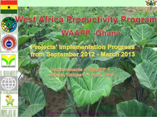 MOAP© West Africa Agricultural Productivity Program (WAAPP)-Ghana0
