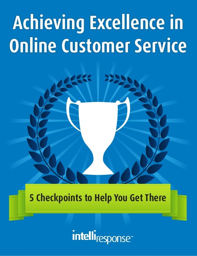 Achieving Excellence in Online Customer Service