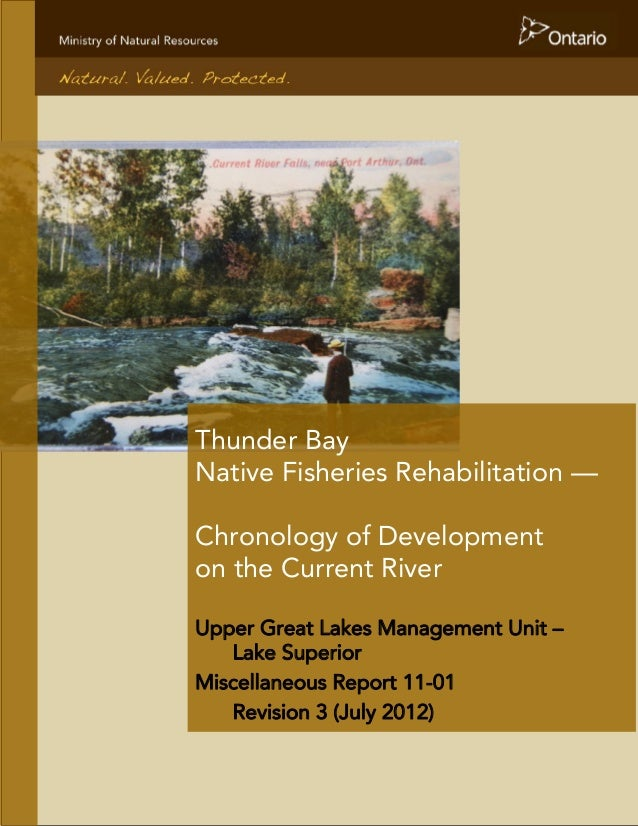 Thunder Bay Native Fisheries Rehabilitation — Chronology of Development on the Current River Upper Great Lakes Management ...