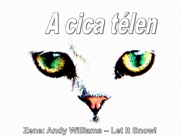 A cica télen<br />Zene: Andy Williams – LetItSnow! <br />
