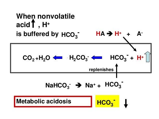 Acid Base Balance And Primary Disturbances Basic Concepts