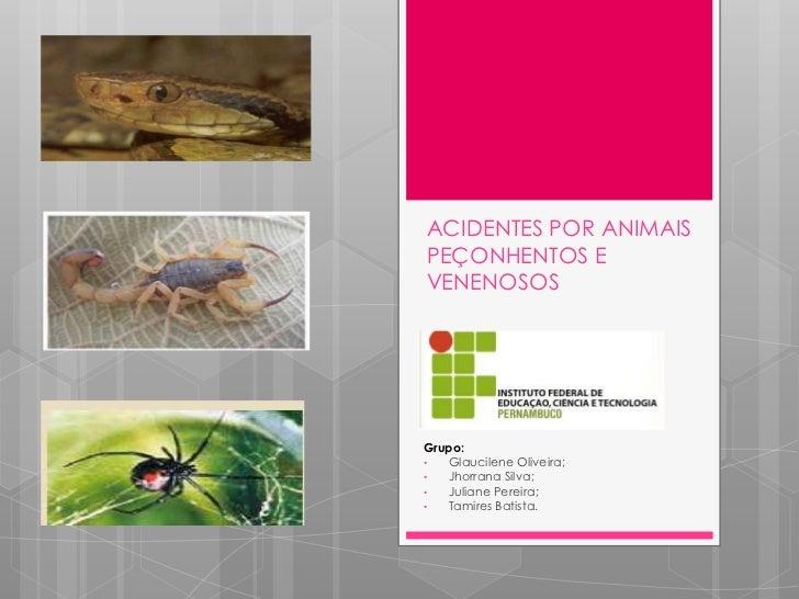ACIDENTES POR ANIMAISPEÇONHENTOS EVENENOSOSGrupo:•  Glaucilene Oliveira;•  Jhorrana Silva;•  Juliane Pereira;•  Tamires Ba...