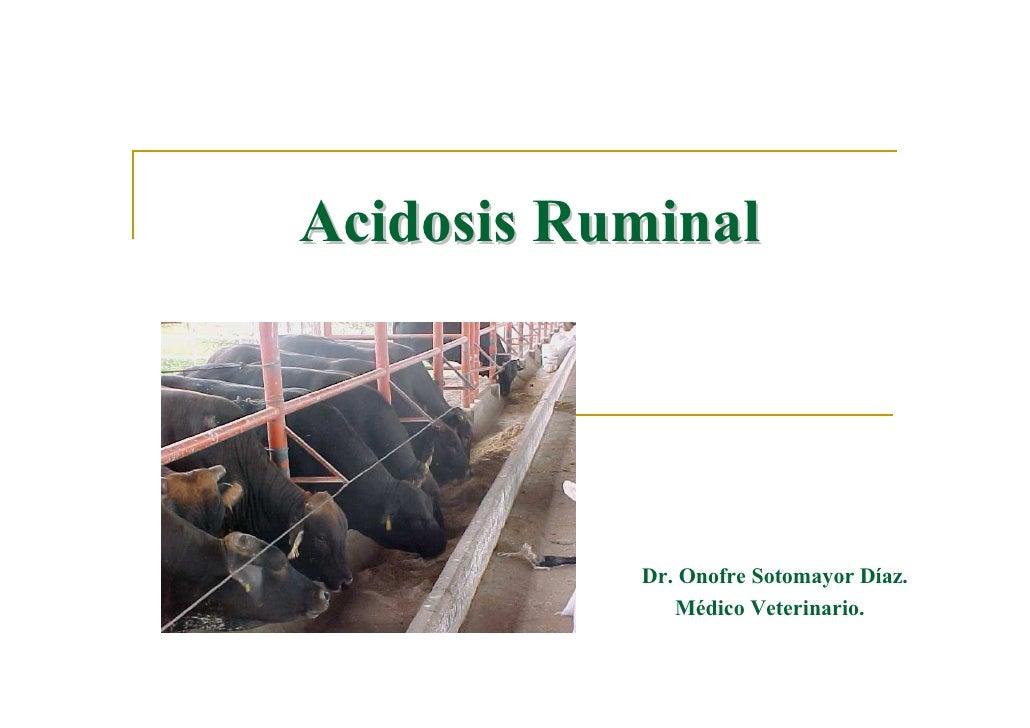 Acidosis Ruminal                Dr. Onofre Sotomayor Díaz.               Médico Veterinario.
