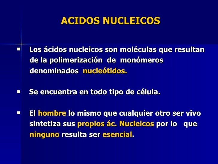 Los Acidos Acidos Nucleicos Los