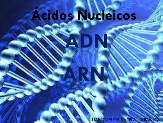 Ácidos Nucleicos JUAN CARLOS VARELA NARANJO