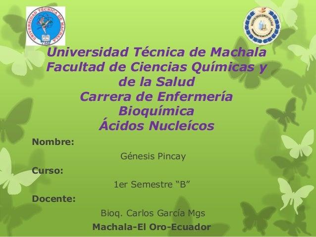 Universidad Técnica de Machala Facultad de Ciencias Químicas y de la Salud Carrera de Enfermería Bioquímica Ácidos Nucleíc...