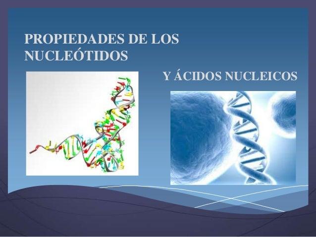 PROPIEDADES DE LOS NUCLEÓTIDOS Y ÁCIDOS NUCLEICOS