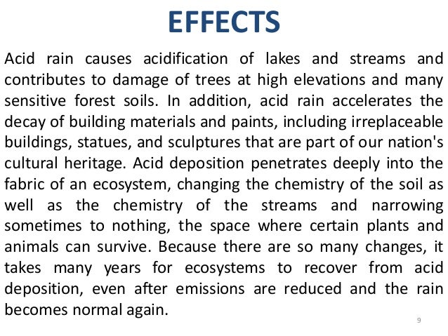 cause and effect essay about acid rain Air pollution: causes and effects you may have read about this over again as air pollution effects is a common topic in writing essay acid rain can be fatal to.