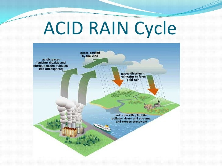 the effects of acid rain on north americas aquatic ecosystems Acid rain has affected freshwater ecosystems for more than 50 years in much of northern europe and north america the acidification of waters, along with concurrent reduction in acid.