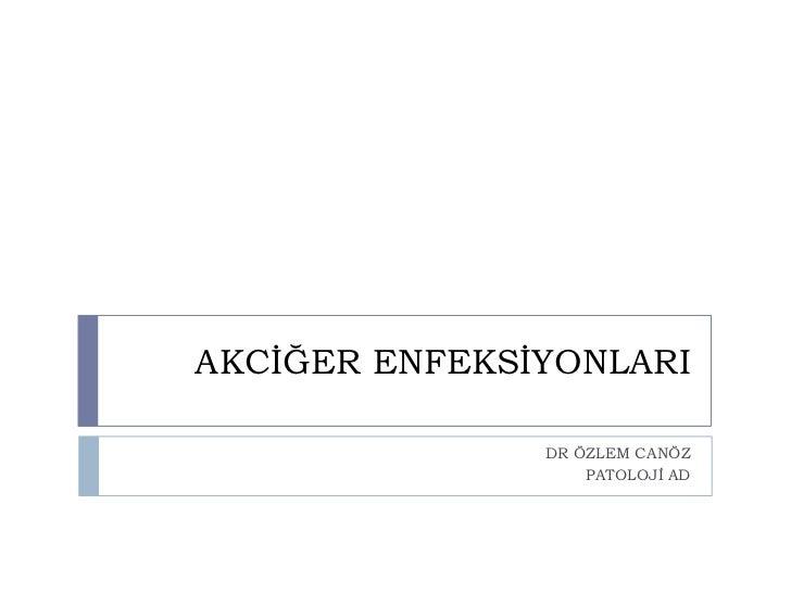 akciger enfeksiyonları (fazlası için www.tipfakultesi.org )