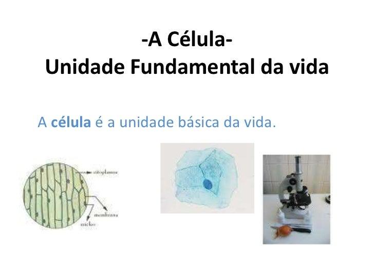 -A Célula- Unidade Fundamental da vidaA célula é a unidade básica da vida.