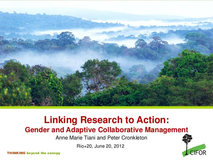 Linking research to action: gender and adaptive collaborative management