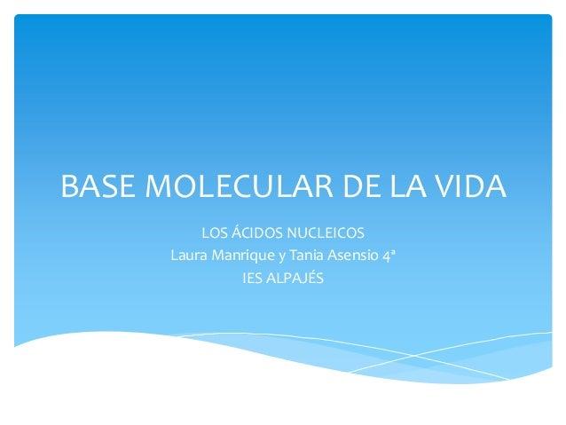 BASE MOLECULAR DE LA VIDA LOS ÁCIDOS NUCLEICOS Laura Manrique y Tania Asensio 4ª IES ALPAJÉS