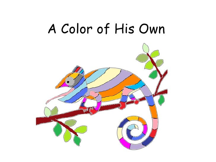 chameleon pipe cleaner animals a color of his own - A Color Of His Own Book